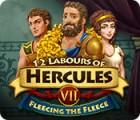 Les 12 Travaux d'Hercule VII: Tout en toisant la Toison jeu
