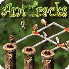 Ant Tracks jeu