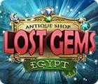 Antique Shop: Lost Gems Egypt jeu