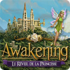 Awakening: Le Réveil de la Princesse jeu