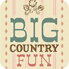 Big Country Fun jeu