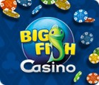 Big Fish Casino jeu