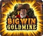 Big Win Goldmine jeu