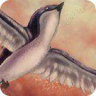 Birds Defender jeu