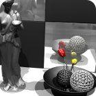 Black and White Enigma jeu
