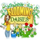 Blooming Daisies jeu