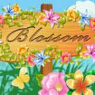 Blossom jeu