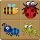 Bug Box jeu
