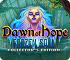 Dawn of Hope: The Frozen Soul Collector's Edition jeu