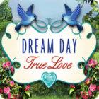 Dream Day True Love jeu