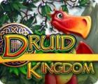 Druid Kingdom jeu