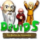 Druid's: En Quête du Grimoire jeu