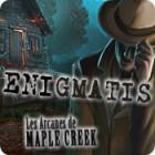 Enigmatis: Les Arcanes de Maple Creek jeu