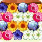 Flower Power jeu