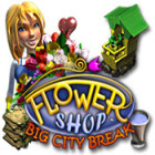 Flower Shop: Big City Break jeu
