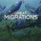 Great Migrations jeu