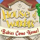 House of Wonders: Babies Come Home jeu