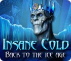Insane Cold: Back to the Ice Age jeu