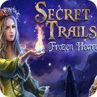 Secret Trails: Frozen Heart jeu