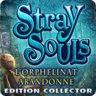 Stray Souls: L'Orphelinat Abandonné Edition Collector jeu