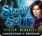 Stray Souls: Stolen Memories Collector's Edition jeu