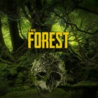 The Forest jeu