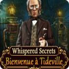 Whispered Secrets: Bienvenue à Tideville jeu