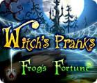 Witch's Pranks: Frog's Fortune jeu