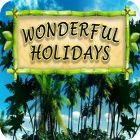 Wonderful Holidays jeu